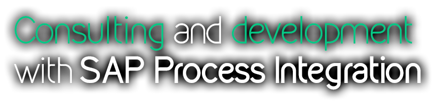 Consulting and Development with SAP Process Integration